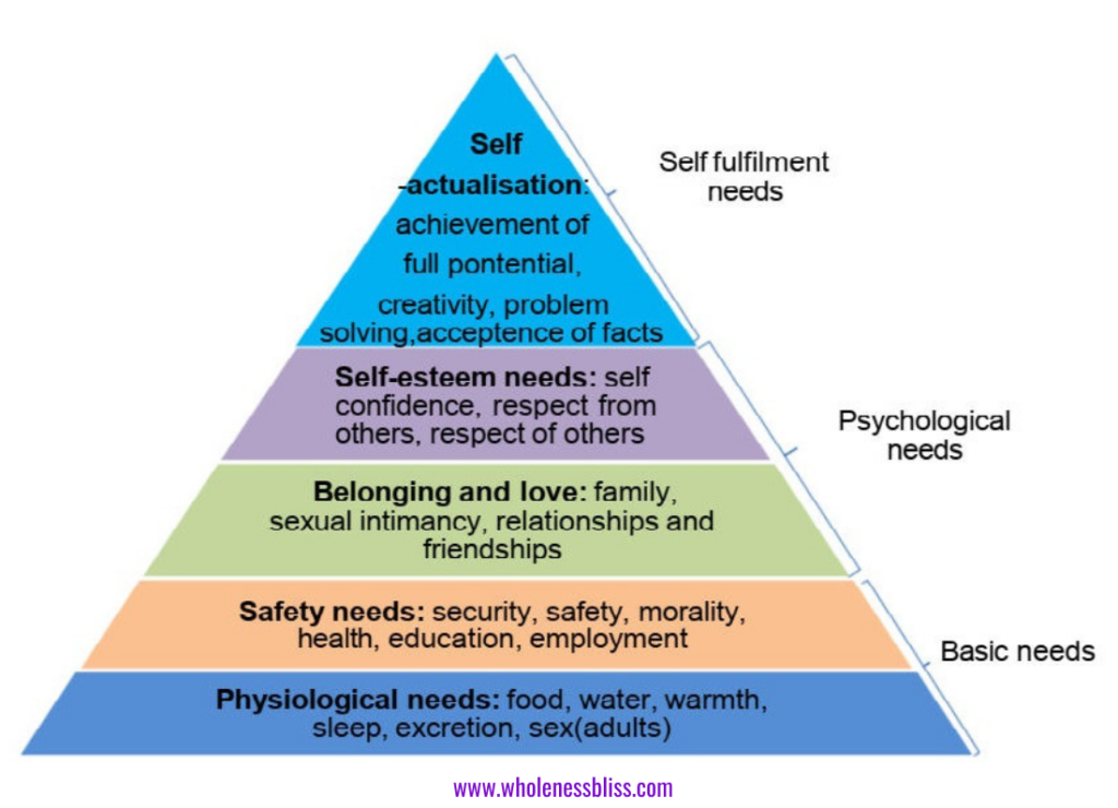 The five basic human needs